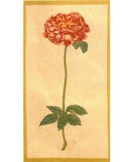 ПАННО ROSE/B/T - подарки от Uniflower