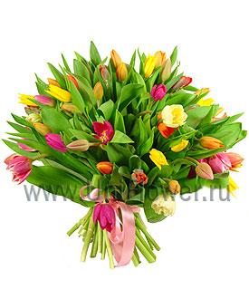 Букет тюльпанов «Салют»