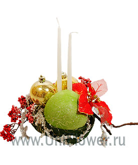 Зимний сад - новогодняя композиция