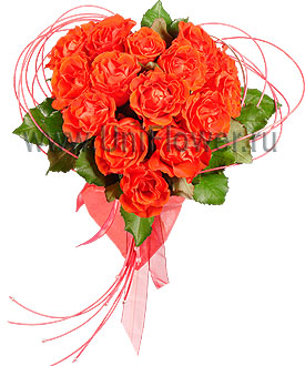Букет 15 роз «Колибри»