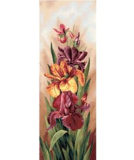Ирисы - Доставка и заказ цветов - UniFlower