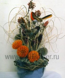 Эскиз - композиция из сухоцветов
