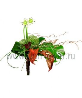 Ветер перемен - букет из экзотических цветов