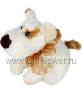 Собачка Мотя - подарки от Uniflower