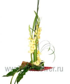 Афины - букет из экзотических цветов