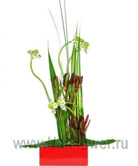 Созерцание - букет из экзотических цветов