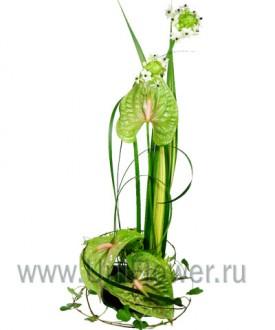 Рапсодия - букет из экзотических цветов
