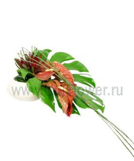 Осло - букет из экзотических цветов