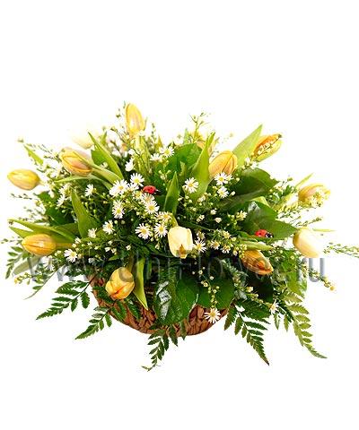 Букет тюльпанов «Очарование весны»