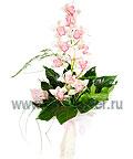 Влюбленная орхидея